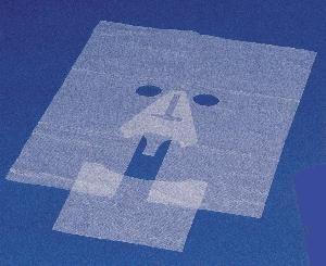 lasermask